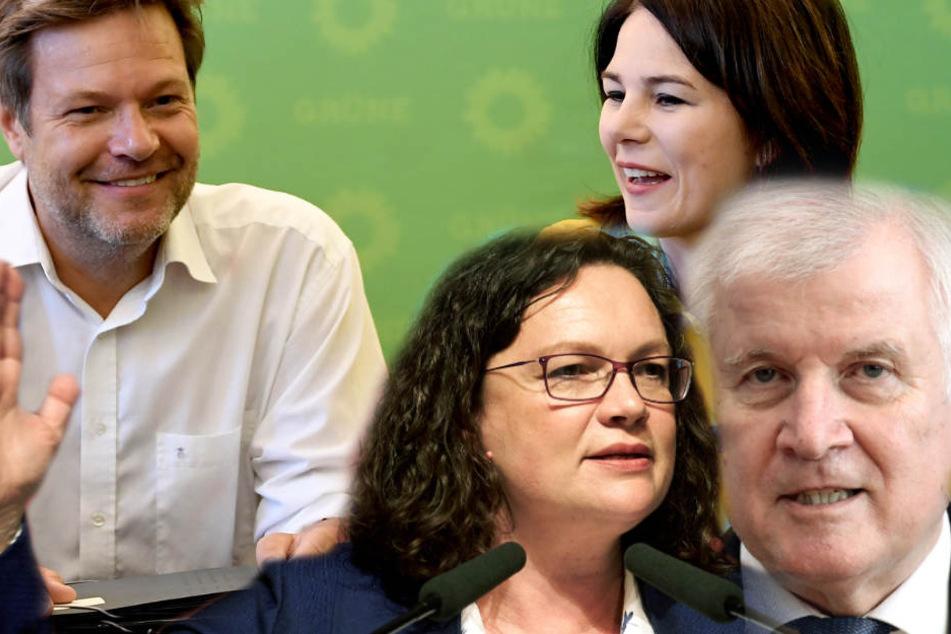 Umfrage: Grüne lachen, Seehofer angezählt, SPD im Keller