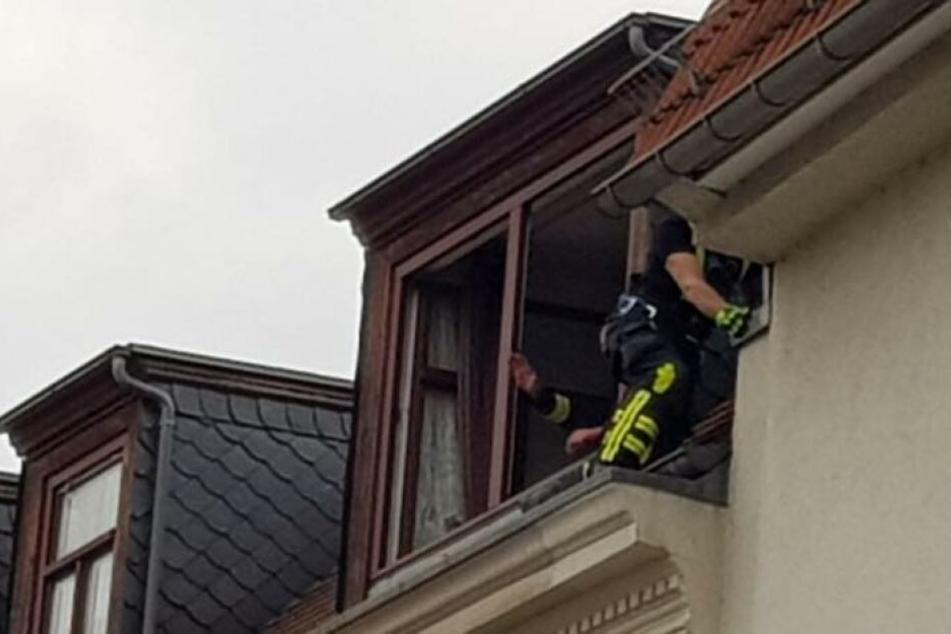 Ein Kamerad kletterte über die anliegende Dachgeschosswohnung aufs Dach und befreite den Vogel.
