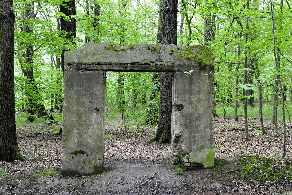 Mysteriös: die Tor-Ruine am Poltermühlenteich.