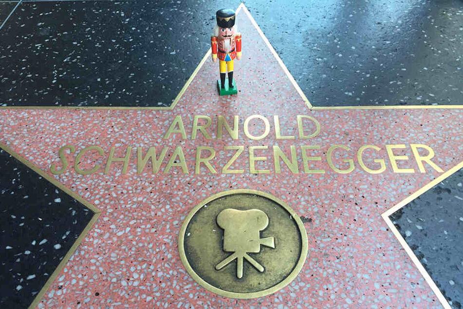 Selbst in Hollywood mischte sich der Kleine unter die Stars. Immer wieder  wurden seine Reisebegleiter von Fremden angesprochen, ob sie mit dem Nussknacker ein Selfie machen dürfen. Aber  gerne doch!