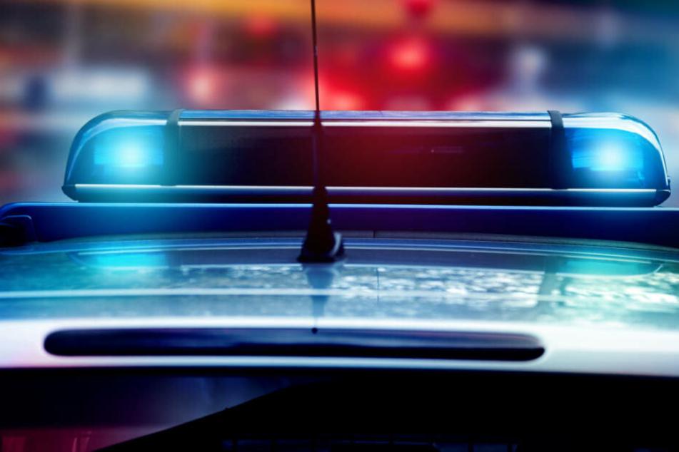 Die Polizei rückte mit mehreren Streifen und einem Polizeihund zu den Vorfällen in Eckenheim an (Symbolbild).