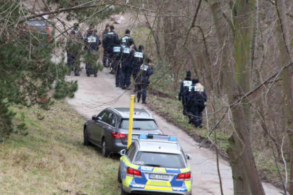 Polizisten suchen bei Mannheim in einem Waldstück nach Hinweisen zur Tat. (Archivbild)