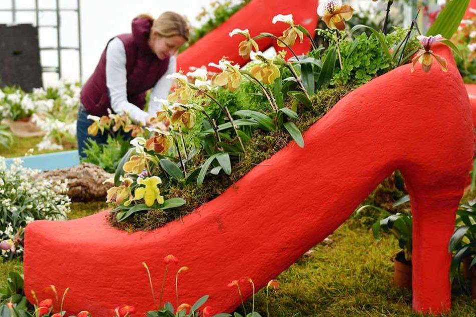 Ein mit Blumen bepflanzter Pumps auf der