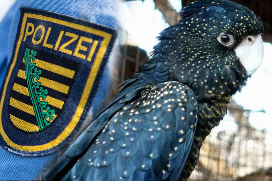 Razzia bei Dresdner Betrüger: 36 Vögel im Wert von 100.000 Euro beschlagnahmt!