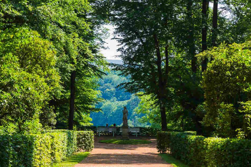 Das Schloss Lichtenwalde der Gemeinde Niederwiesa ist von von einem Barockpark mit zahlreichen Wasserspielen umgeben. 2005 wurde die Anlage zu einem der schönsten Parks in Deutschlands gekürt.
