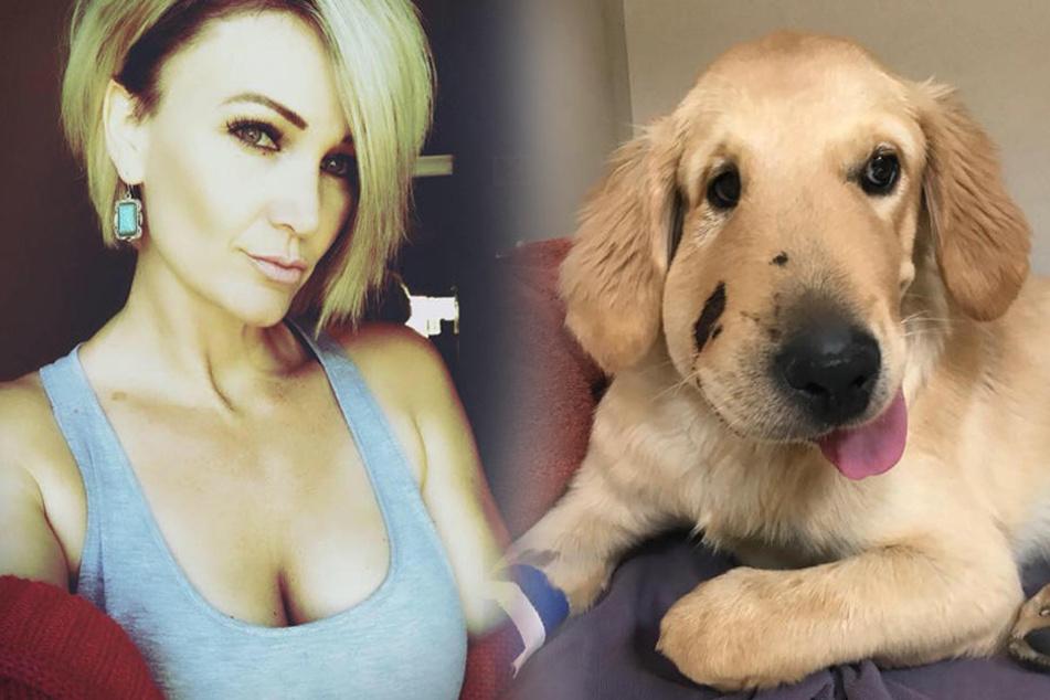 Paula Godwin wurde von ihrem Hund Todd gerettet.