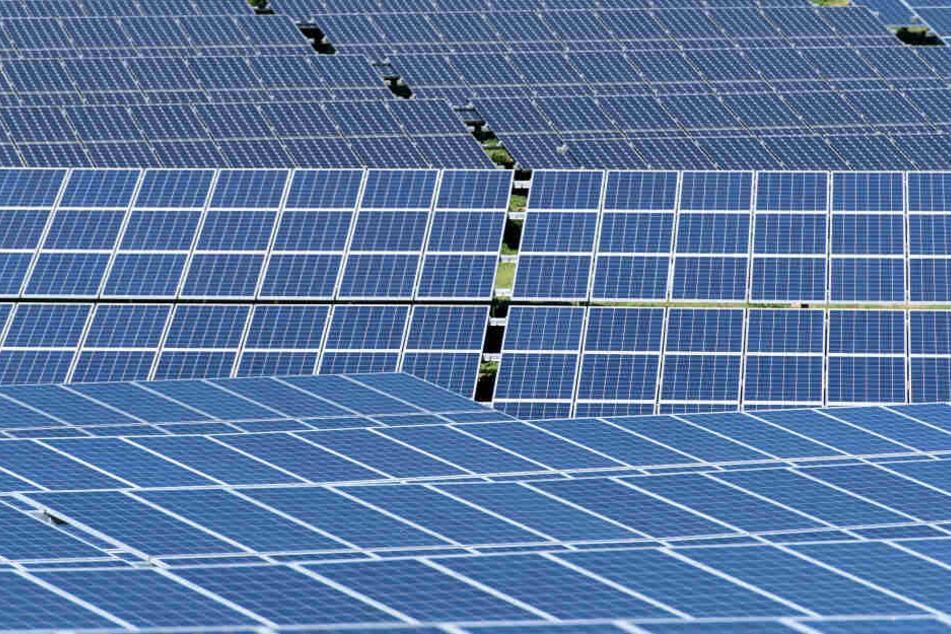 Diebe klauen 200 Solarmodule im Erzgebirge