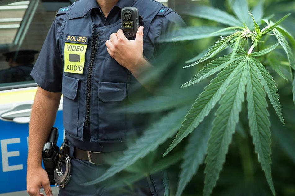 Als sich die Tür öffnete, rochen die Polizisten Cannabis.