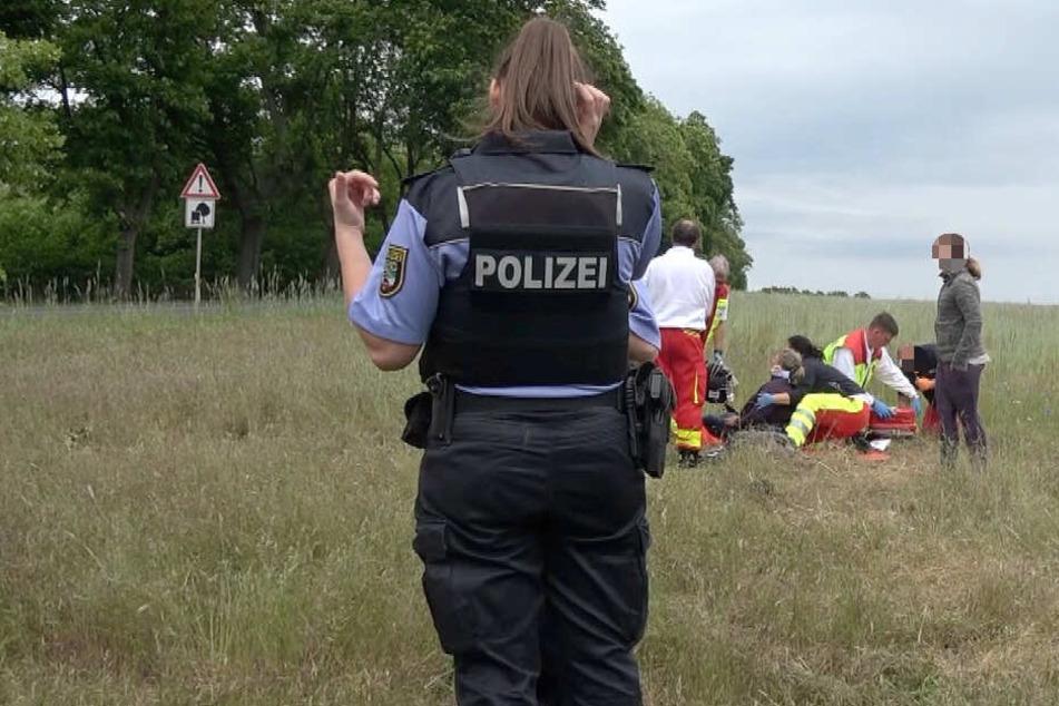 Die Polizei hat neue Details zum Kutschen-Unfall bei Flechtingen herausgegeben.