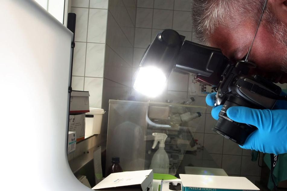 Der in Wittenburg gefundene Leichnam wird gerichtsmedizinisch untersucht.
