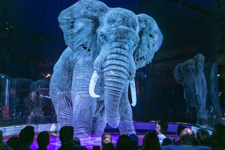 Ein Mega-Elefant steht als Hologramm in der Manege vom Circus Roncalli.