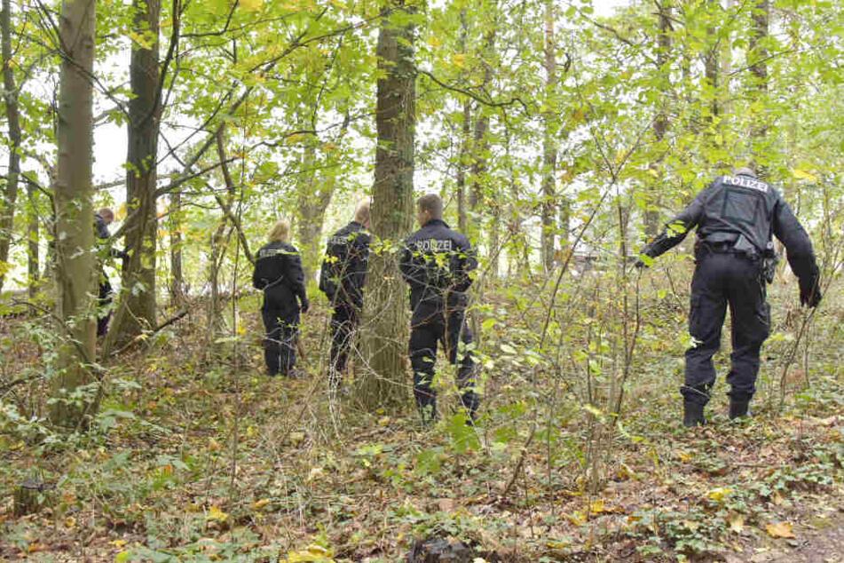 Auch das Gestrüpp zwischen den Bäumen suchen die Polizisten ab.