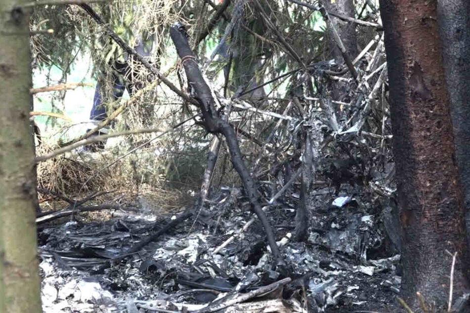 Kleinflugzeug stürzt in Wald und geht in Flammen auf