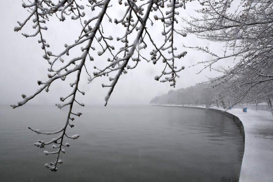 Die Ostküste der USA kommt nicht zur Ruhe. Erneuter Wintereinbruch.