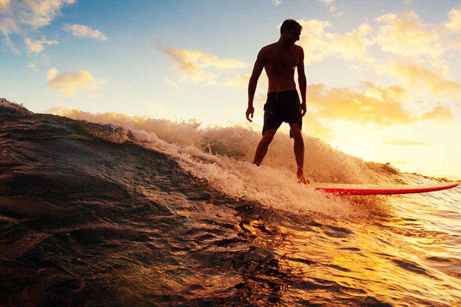 Strand geschlossen! 24-Jähriger wird während Surf-Unterricht attackiert