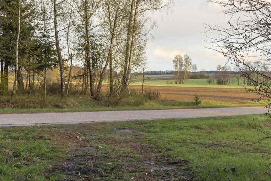 Der Teenager war zu Fuß auf einem verlassenen Feldweg wie diesem unterwegs. (Symbolbild)