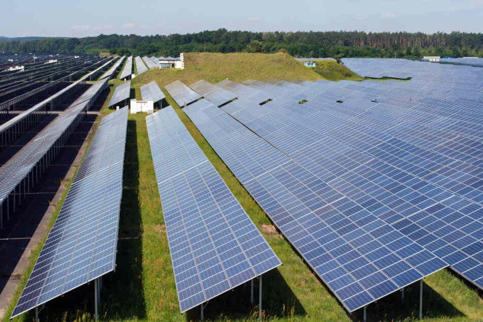 Von einem Solarfeld sind insgesamt 86 Module verschwunden. (Symbolbild)