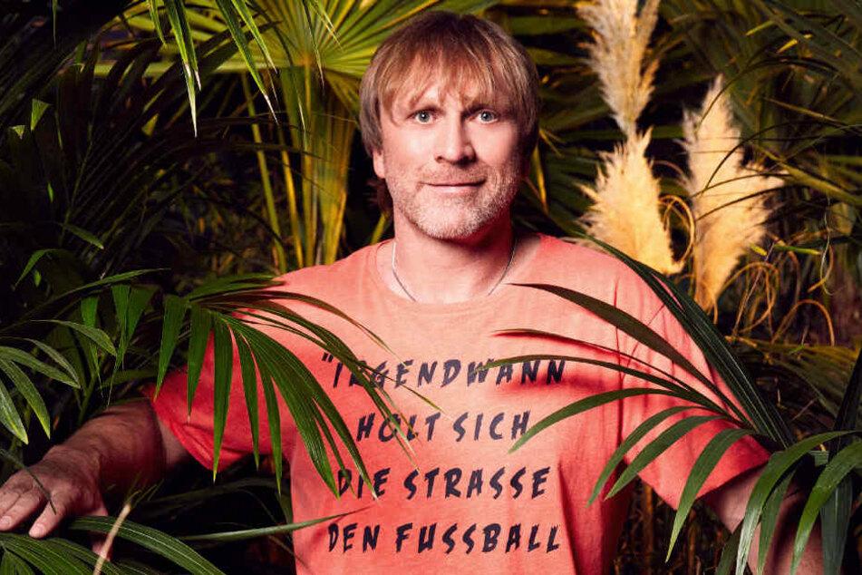 Darauf hat Ansgar Brinkmann im Dschungel  so gar keinen Bock