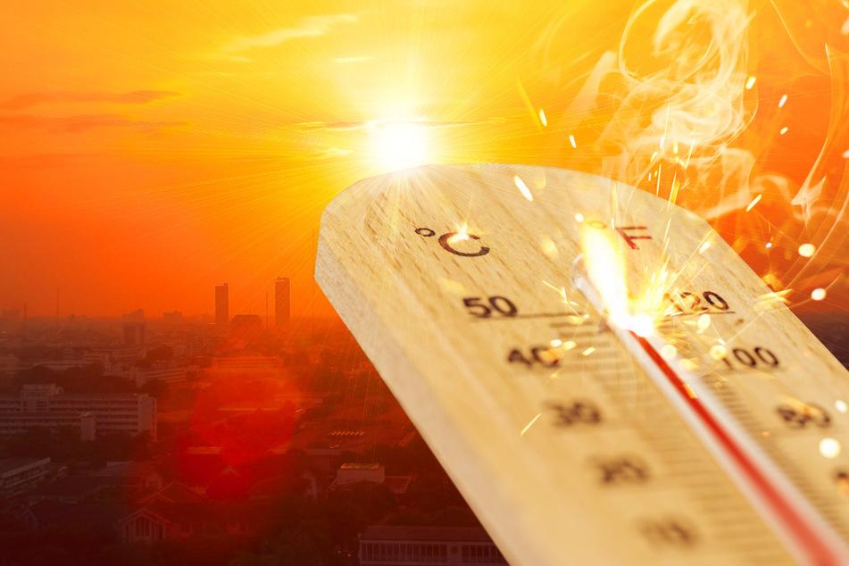 Wetter: Warnung vor gefährlichem Hitzesommer mit bis zu 50 Grad!