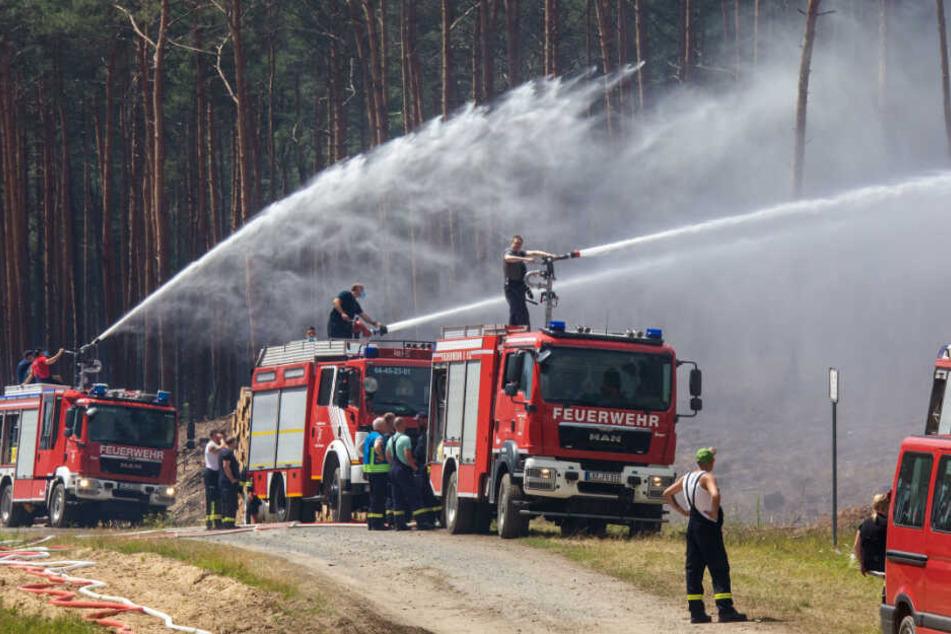 Die Feuerwehr versuchte mit einem Großaufgebot den Waldbrand zu löschen.