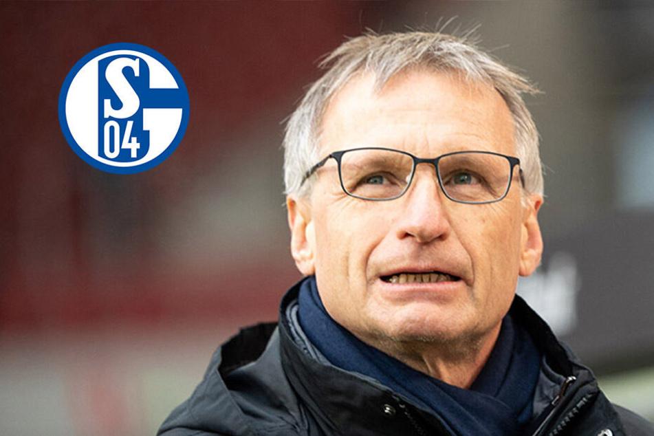 Neuzugang für Schalke! Reschke soll's bei den Königsblauen richten