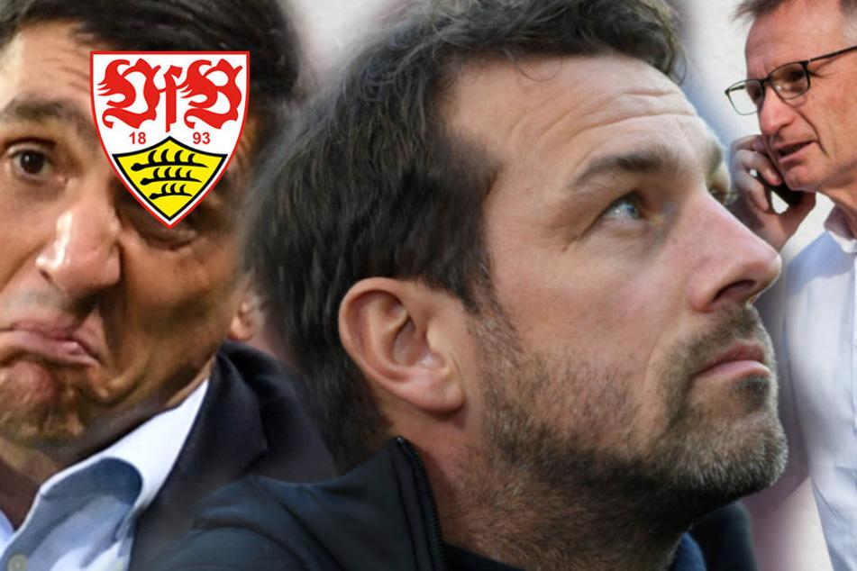 Der VfB Stuttgart 2018: Von Europa geträumt, im Abstiegsstrudel gelandet