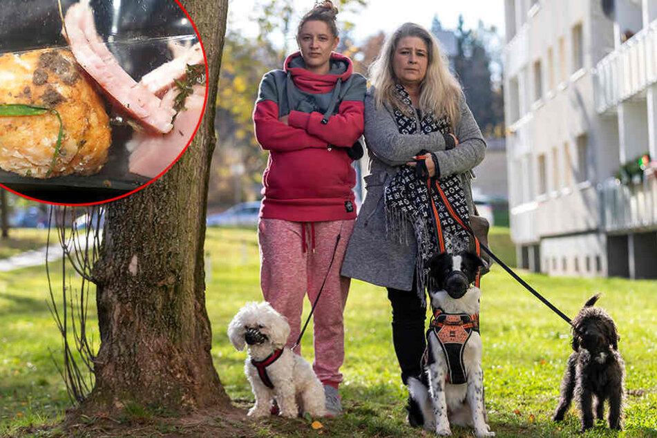 Tierhasserin mischt Gift ins Hack: Diese Hunde starben fast an Killer-Ködern