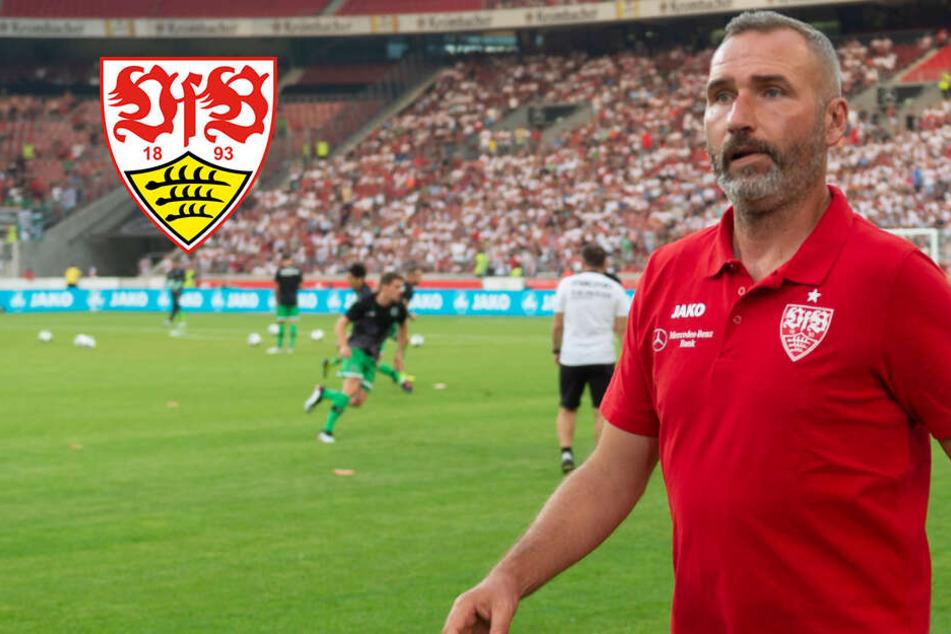 29 Spieler im VfB-Kader? Das sagt Trainer Walter zu seinem Mega-Kader