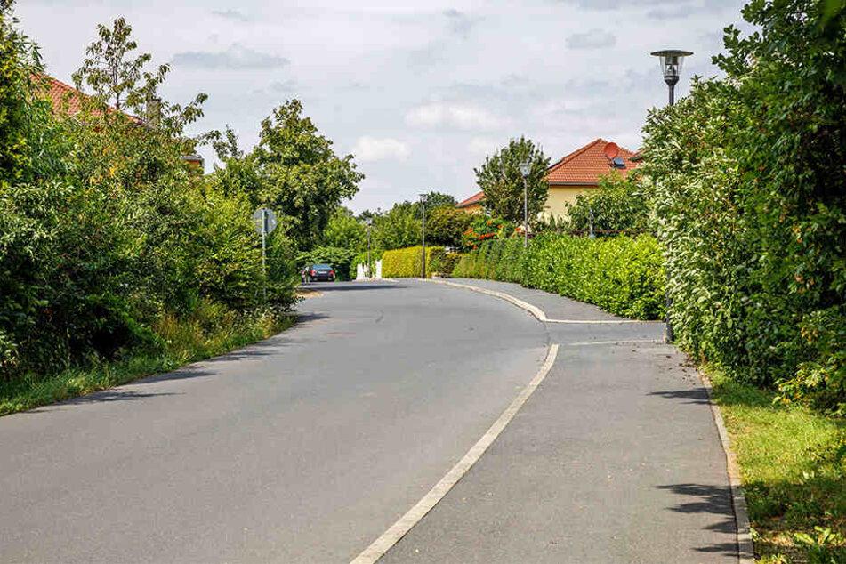 Die kleine Straße in Klotzsche trägt den Namen des dänischen Schriftstellers, der in Dresden lebte.