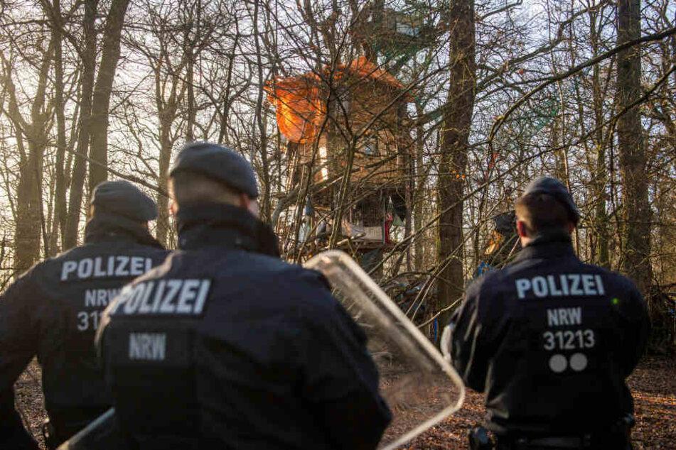 BUND gegen Land NRW vor Gericht: Wie geht es weiter mit dem Hambacher Forst?