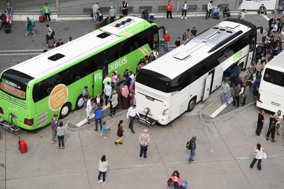 Ohne Toiletten: Frankfurter Fernbusbahnhof nimmt Betrieb auf
