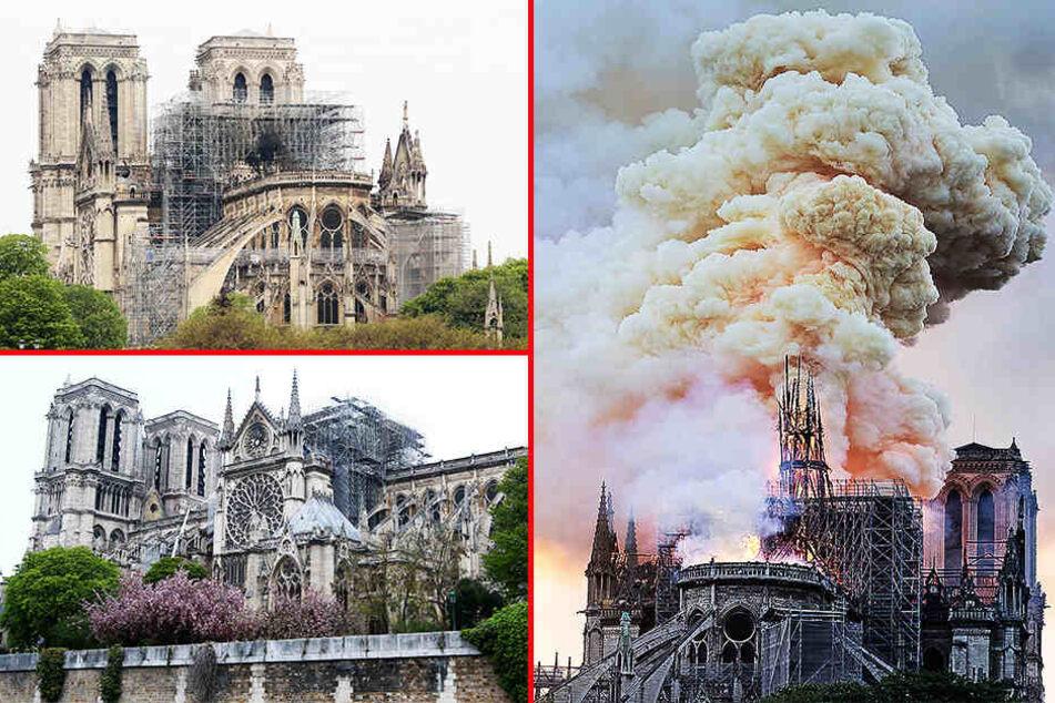 Brand von Pariser Kathedrale Notre-Dame gelöscht!
