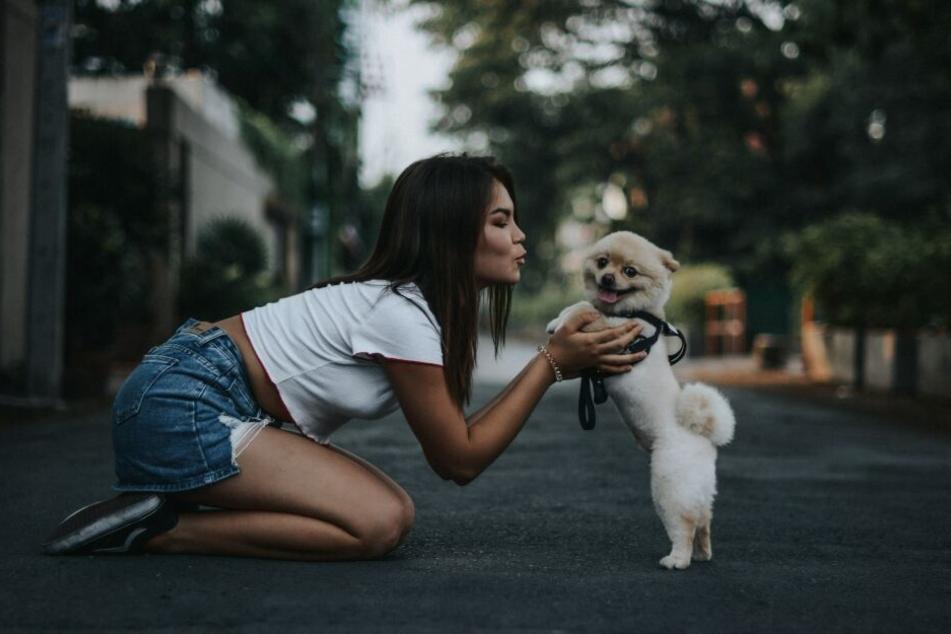 Hunde empfinden eine frontale Begrüßung häufig als Bedrohung.
