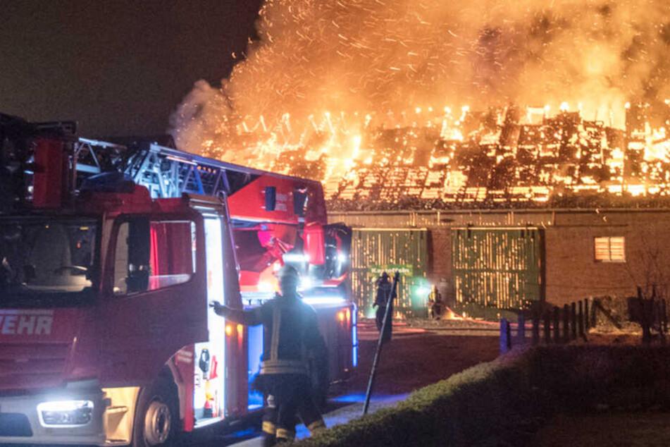 Meterhohe Flammen: Großbrand vernichtet Scheune