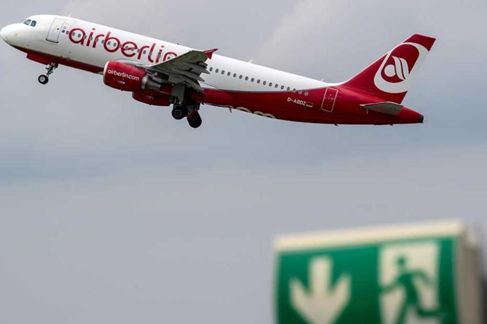Niki Lauda, Condor und Thomas Cook wollen zusammen 38 Air-Berlin-Maschinen übernehmen.