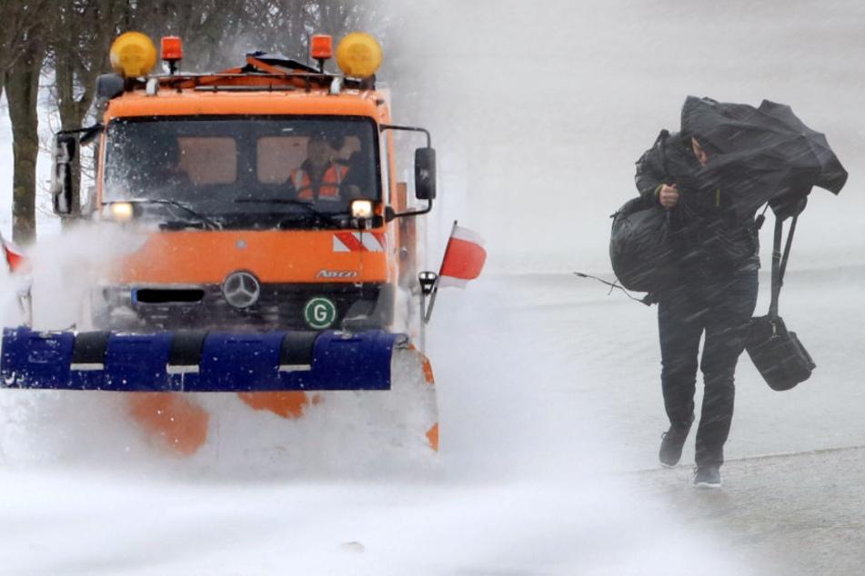 Sturm, Regen, Schnee: Am Wochenende kommt das Wetterchaos zurück nach Sachsen