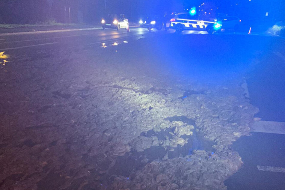Ekel-Crash mit Laster: Schlachtabfälle bedecken Straße