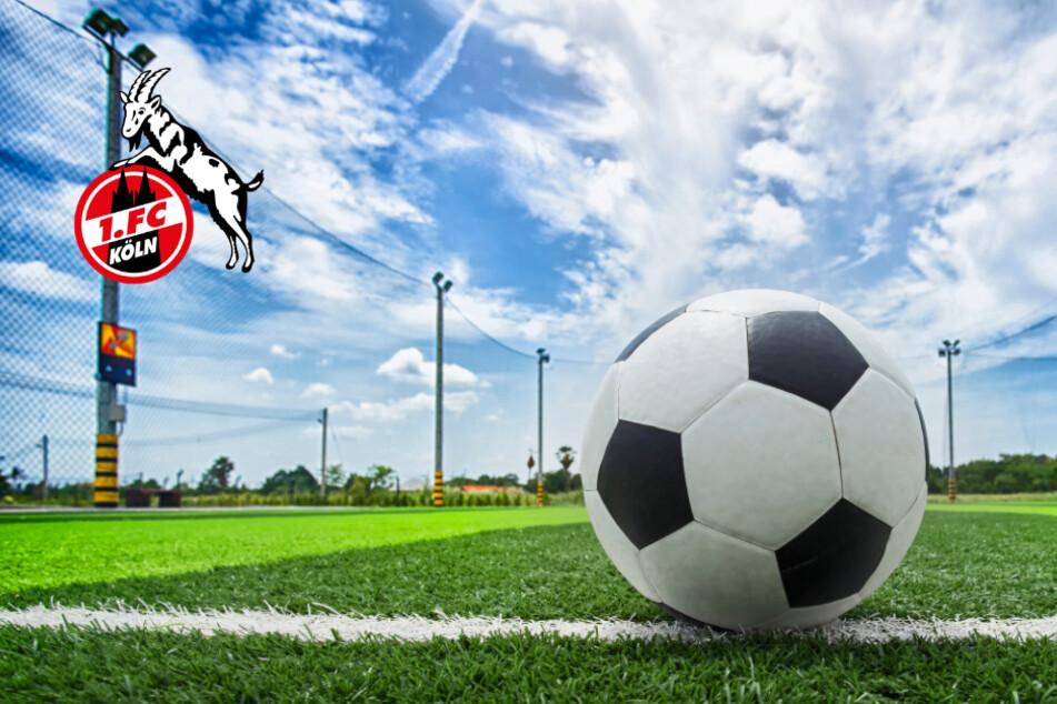 1. FC Köln Zeitplan: Ab Anfang August soll der Ball wieder rollen