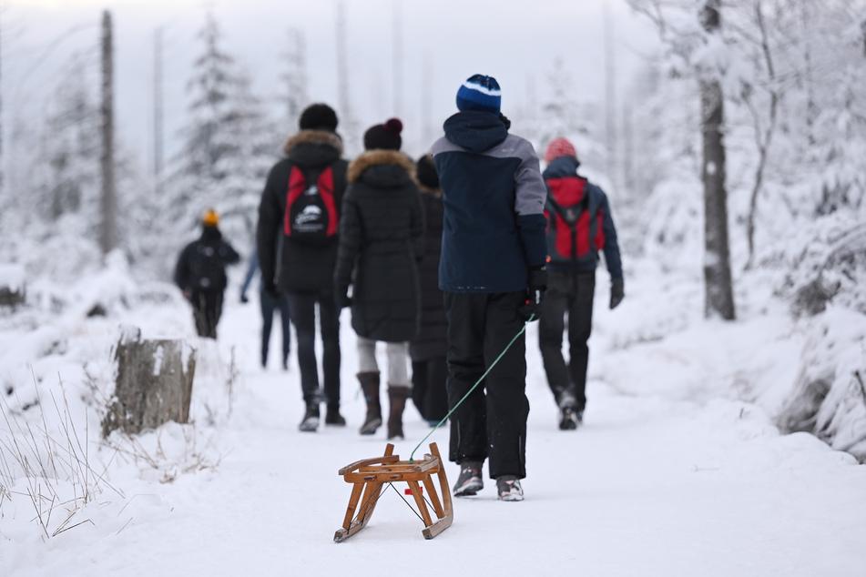 Wanderer mit Schlitten gehen auf dem mit Schnee bedeckten Goetheweg im Harz nahe dem Torfhausmoor in Richtung Brocken.