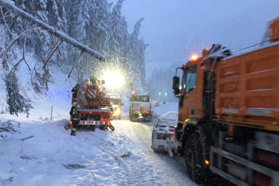 Auch für die kommende Nacht wurden neue Schneefälle angekündigt.