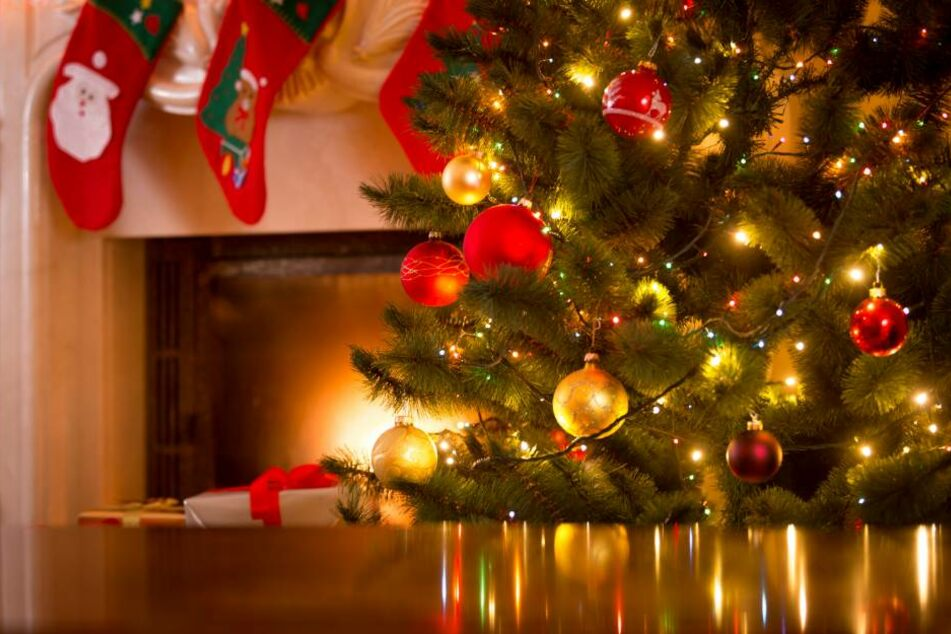 Der Weihnachtsbaum gehört für viele Familien fest zur Weihnachtstradition dazu. (Symbolbild)