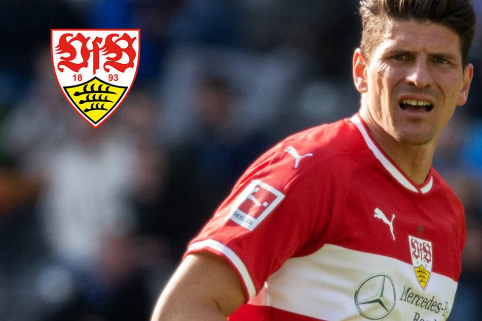 VfB mit Personalproblemen: Holger Badstuber rückt in die Startelf, Gomez macht Sorgen