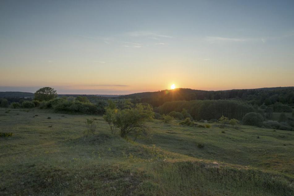 Naturliebhaber können im Vogtland den Sonnenuntergang und weite Felder genießen.