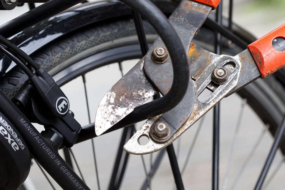 Fahrräder gehörten zum Großteil es in Altlindenau sichergestellten Diebesgutes (Symbolbild).