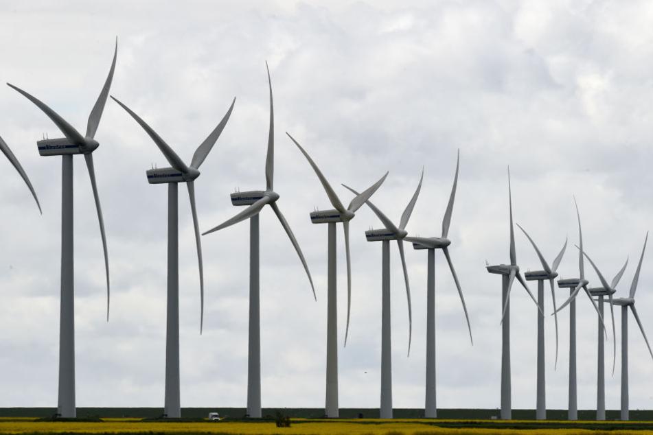 Es gibt neue Regeln für den Abstand von Windkraftanlagen und reinen Wohngebieten in NRW (Symbolbild).
