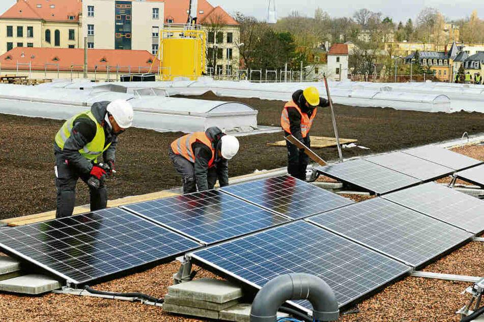 Arbeiter installieren Solaranlagen auf einem Dach in Dresden. Auch der hier produzierte Strom könnte in Zukunft über ein Schwarmkraftwerk verteilt werden.