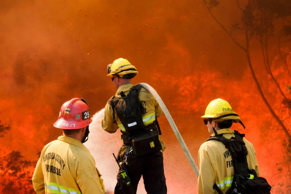 Durch die Waldbrände in Kalifornien war auch das Haus des Entertainers zerstört worden.