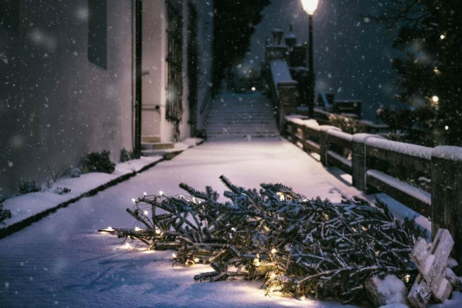 Der hat's hinter sich – doch einfach zur Entsorgung hinaus werfen wie in einer berühmten Möbelhaus-Werbung, sollte man den Weihnachtsbaum besser nicht.
