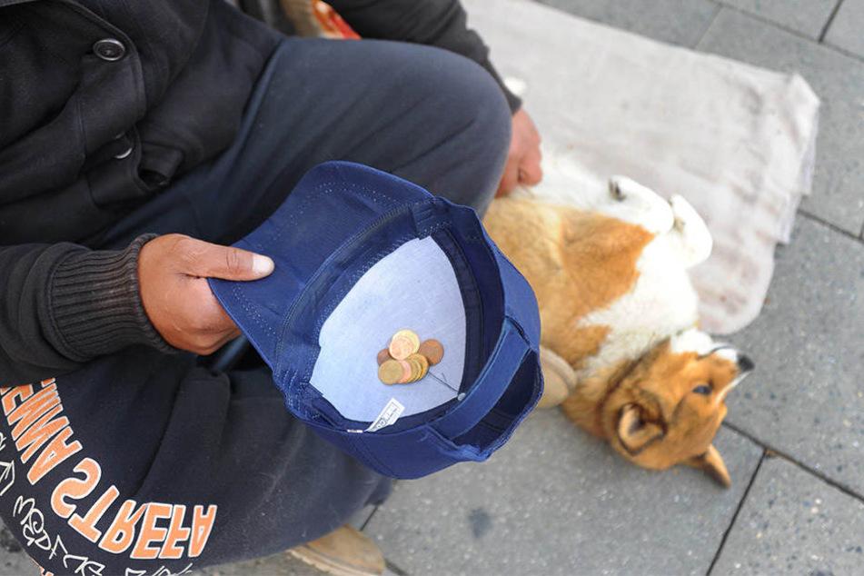 Hundebesitzer kommen oft nicht in Obdachlosenheime. Helft, die Vierbeiner und ihre Eigentümer vor der Kälte zu bewahren!