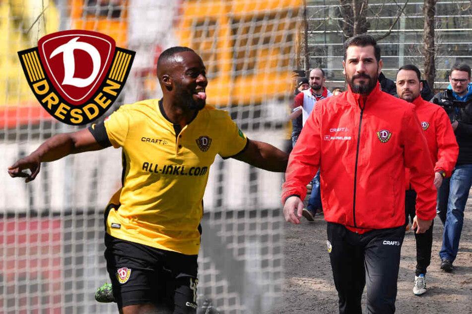 Das Dynamo-Jahr 2019: Osterwunder, Trainer Fiel und ein Kabinettstück